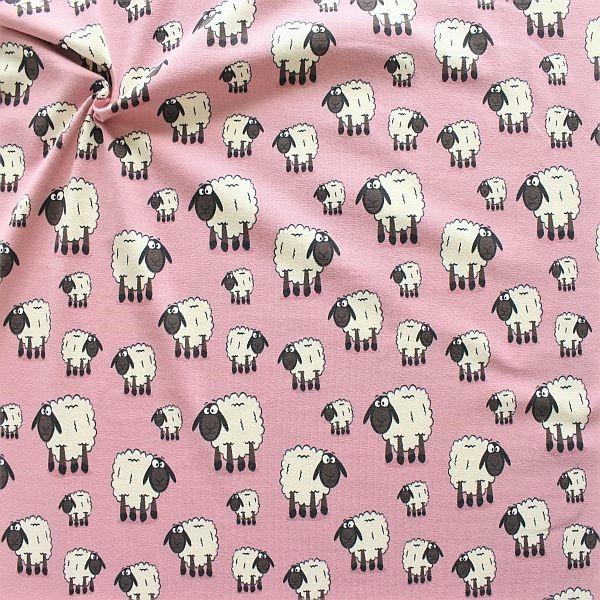 Baumwoll Stretch Jersey Schafe Alt-Rosa