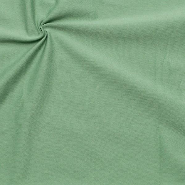 Organic Baumwoll Stretch Jersey Farbe Mint