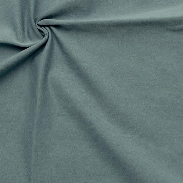 Bio-Baumwoll Stretch Jersey Organic Tauben-Blau