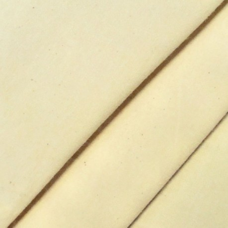 Baumwolle Segeltuch Ecru / Naturfarben